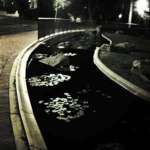 Night at the Denver University, CO